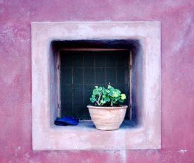 Tiny tree pot on square window Stock Photo