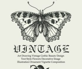 Vintage gothic butterfly background vector