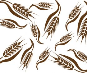 Wheat pattern design vector 03