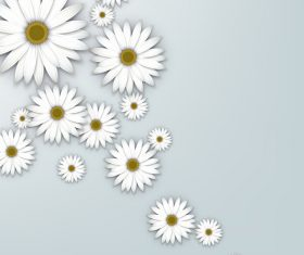 White chrysanthemum background vectors 02