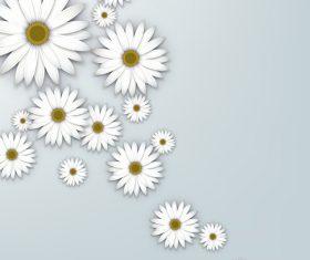 White chrysanthemum background vectors 02