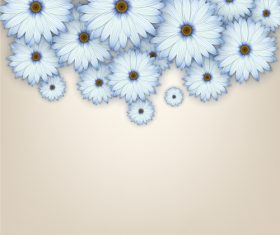 White chrysanthemum background vectors 03
