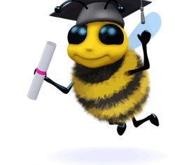 bee mortar board cartoon vector