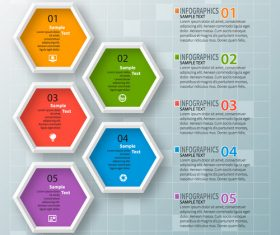 hexagon option infographic template vector 02