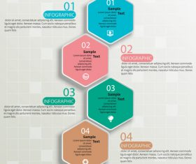 hexagon option infographic template vector 03