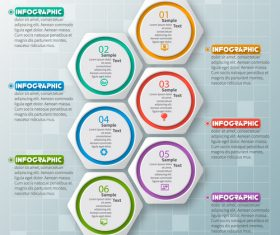 hexagon option infographic template vector 04