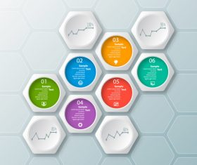 hexagon option infographic template vector 06