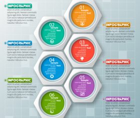 hexagon option infographic template vector 07