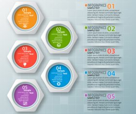 hexagon option infographic template vector 08