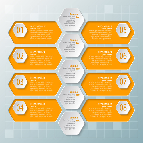hexagon option infographic template vector 09