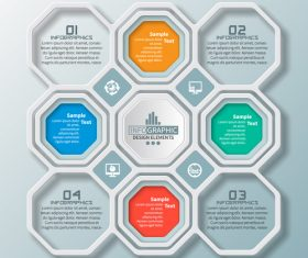 hexagon option infographic template vector 12