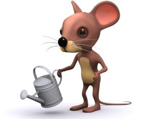 mouse watering cartoon vector