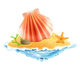 shell with starfish summer travel vector