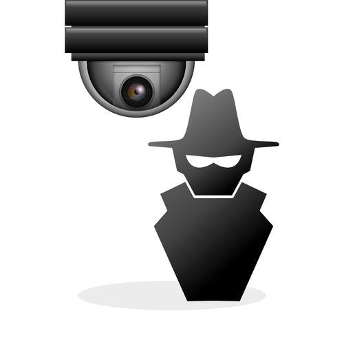 theif with surveillance cameras vector