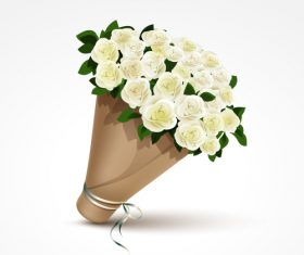 A bouquet of white roses vector