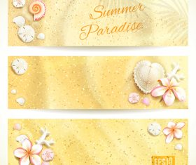 Beach shells and flower banners vector