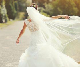 Bride wedding photos in different scenes Stock Photo 01