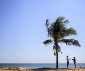 Couple of Gimme five under the coconut tree Stock Photo
