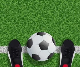Green grass with soccer field background vector