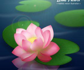 Realistic lotus background vector