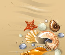 Starfishes and shell with beach background vector 01
