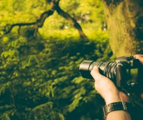 Use smart digital camera to capture natural scenery Stock Photo
