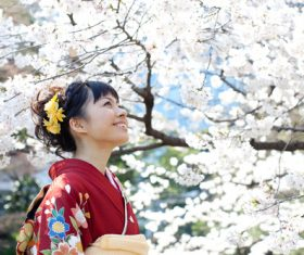 Woman wearing Japanese national costume watching cherry blossoms Stock Photo 01