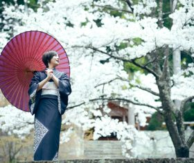 Woman wearing Japanese national costume watching cherry blossoms Stock Photo 03