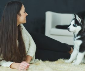 Woman with puppies husky Stock Photo 08