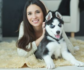 Woman with puppies husky Stock Photo 09