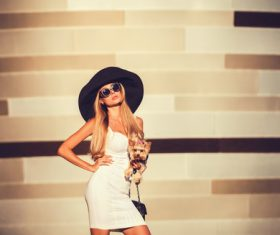 fashion woman is holding pet dog posing Stock Photo 13