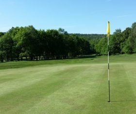 golf course Stock Photo 01