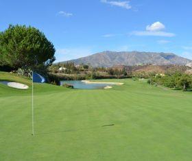 golf course Stock Photo 02