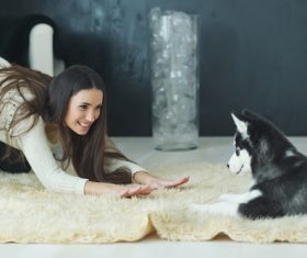 puppies husky and girl play Stock Photo 03
