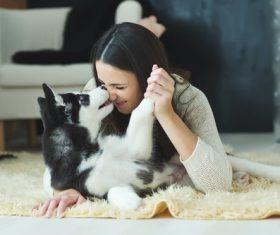 puppies husky and girl play Stock Photo 05