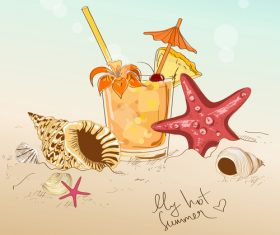 seashell with beach and drink vector