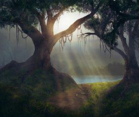 Amazing nature beautiful scenery Stock Photo 15