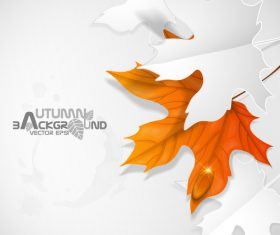 Autumn background with paper cutting leaves vector