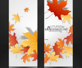 Autumn banner and red maple leaves vector