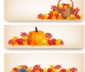 Autumn holiday banners with beauty colorful leaves and fruit vector
