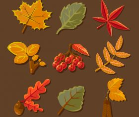 Autumn leaves illustration with berry vector