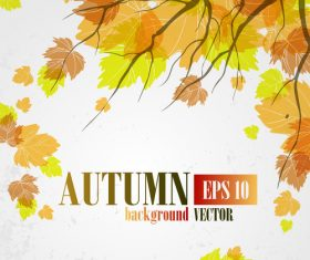 Autumn leaves with autumn background design vector 01