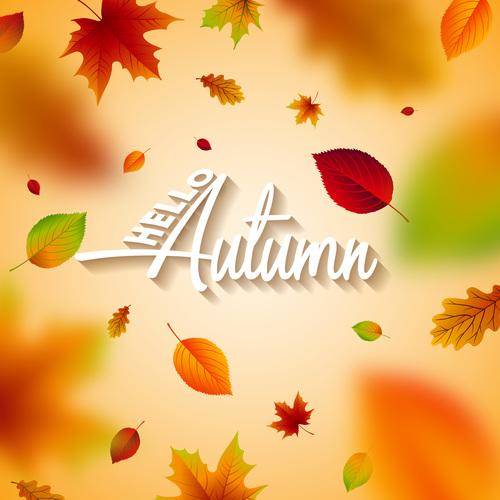 Beautiful autumn background art vector 01