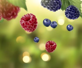 Berry with natural background vector 02