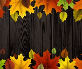Colored autumn leaves with wooden background vector 02