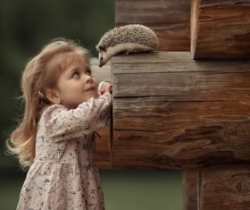 Cute little girl looking at the hedgehog on the wood Stock Photo