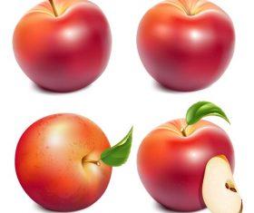 Fresh apples design vectors set 01