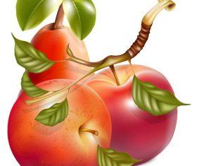 Fresh apples design vectors set 06