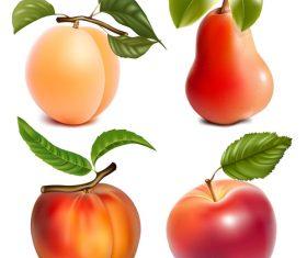 Fresh fruits design set vector 03