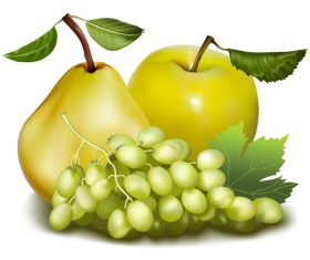 Fresh fruits design set vector 06